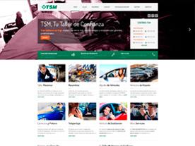 TSM Automóviles